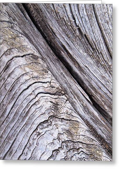 Barnwood...weathered Greeting Card by Tom Druin