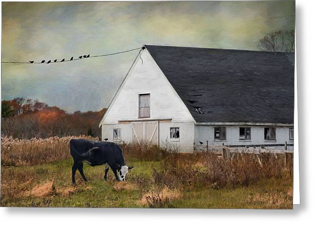 Barnyard Bliss Greeting Card by Robin-Lee Vieira