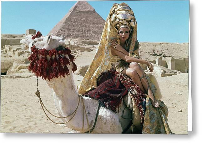 Baronne Van Zuylen On A Camel Greeting Card by  Leombruno-Bodi