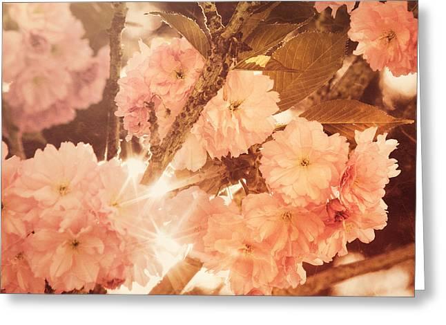 Baroque Spring Greeting Card