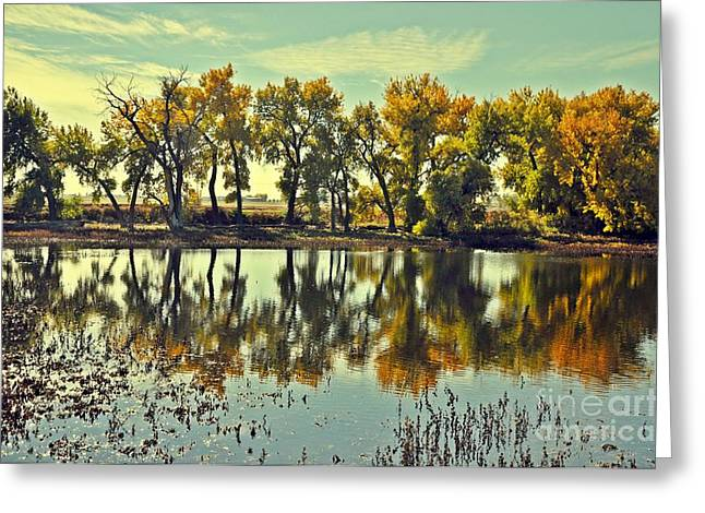 Barr Lake Reflection Greeting Card by Reza Mahlouji