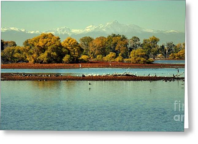 Barr Lake With Longs Peak Greeting Card by Reza Mahlouji