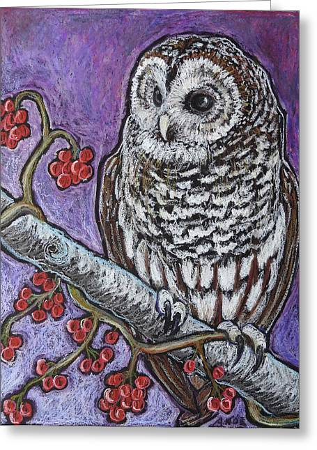 Barred Owl And Berries Greeting Card by Ande Hall