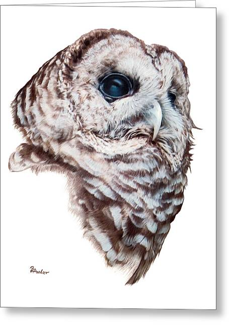 Greeting Card featuring the drawing Barred Owl by Brent Ander