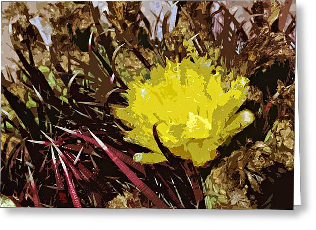 Barrel Cactus Bloom Greeting Card by Jack McAward
