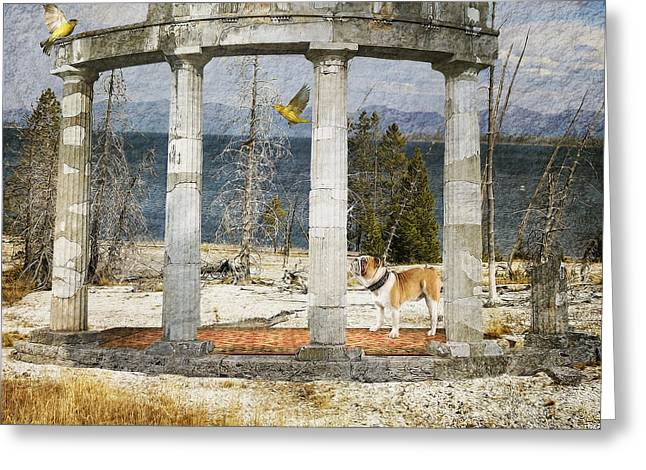 Greeting Card featuring the digital art Barren Shoreline by Liane Wright