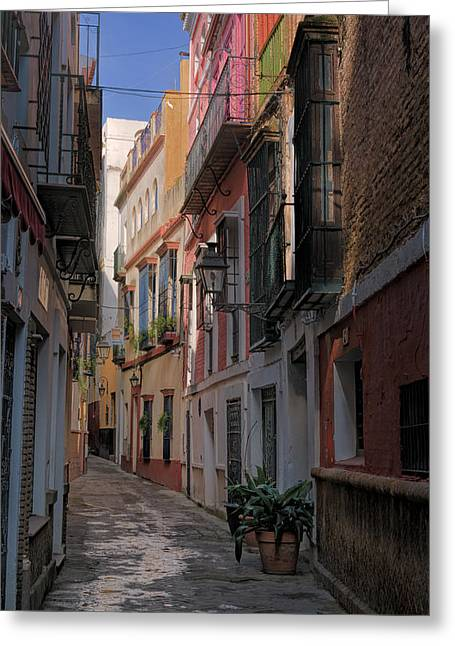 Barrio Santa Cruz Seville Greeting Card