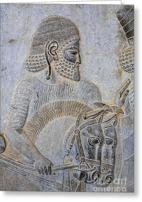 Bas Reliefs At Persepolis In Iran Greeting Card by Robert Preston
