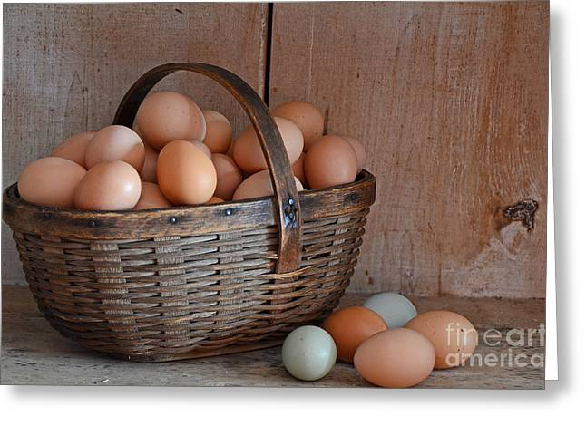 Basket Full Of Eggs Greeting Card by Mary Carol Story