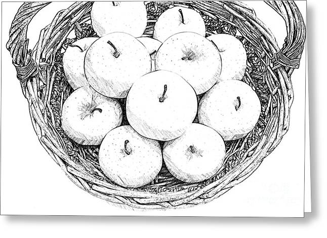 Basket With Apples Sketch Greeting Card