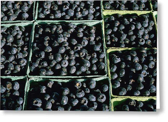 Baskets Of Blueberries Greeting Card by Panoramic Images