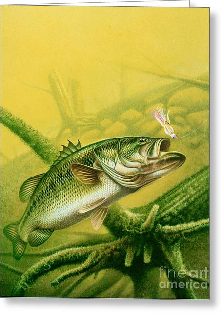 Bass And Jig Greeting Card by jon Q Wright
