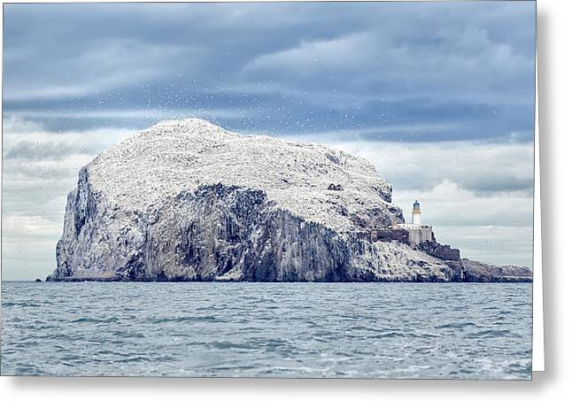 Bass Rock Greeting Card