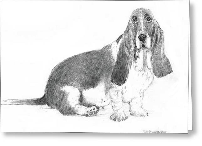 Greeting Card featuring the drawing Basset Hound by Jim Hubbard