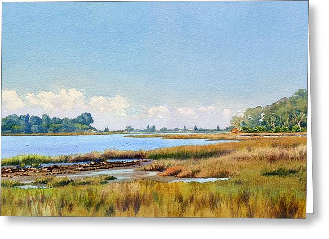 Batiquitos Lagoon Marshland Greeting Card by Mary Helmreich
