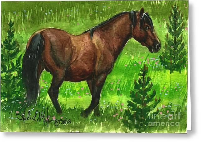 Bay Alberta Stallion Greeting Card