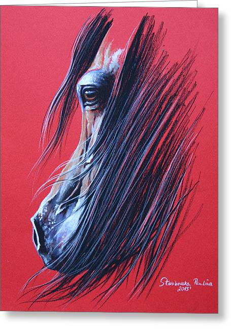 Bay Arabian Horse Greeting Card