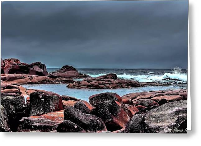 Greeting Card featuring the photograph Bay Of Fires 3 by Wallaroo Images