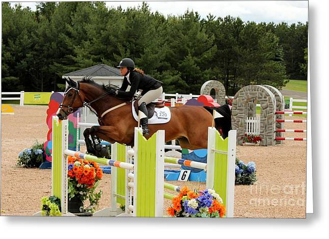 Bay Show Jumper Greeting Card
