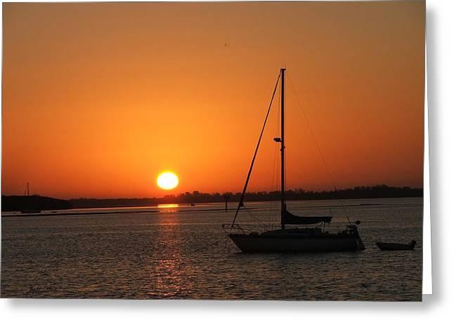 Bay Sunrise Greeting Card