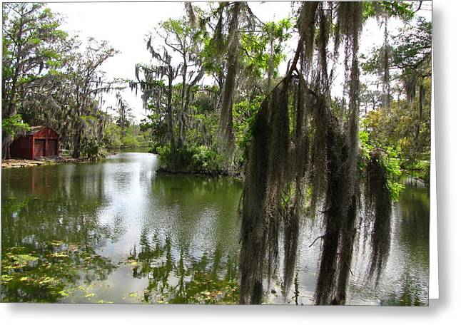 Greeting Card featuring the photograph Bayou by Beth Vincent