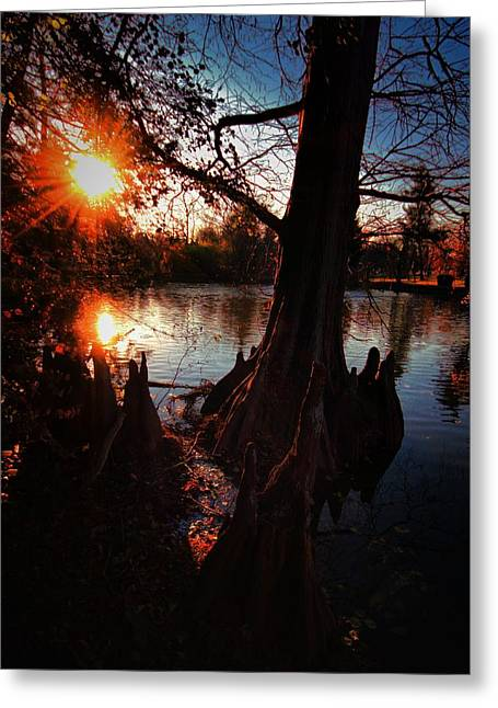 Greeting Card featuring the photograph Bayou Sundown by Robert McCubbin