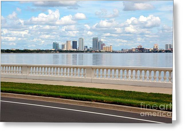 Bayshore Boulevard Greeting Card by Carol Groenen
