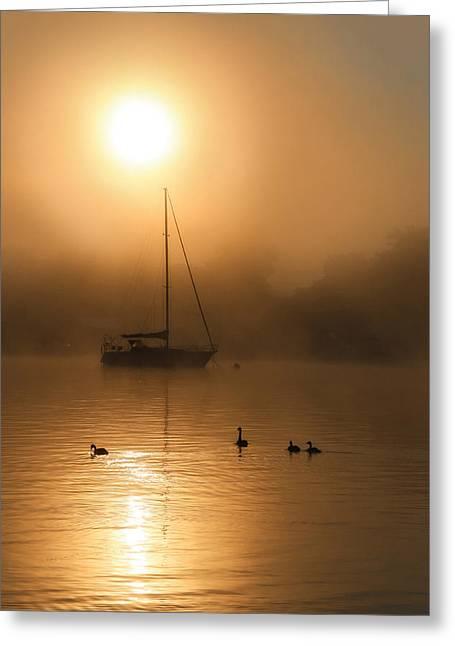 Bayside Sunrise 1 Greeting Card by Lori Deiter