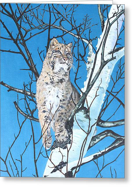 Be Cautious Greeting Card by Rick Reber