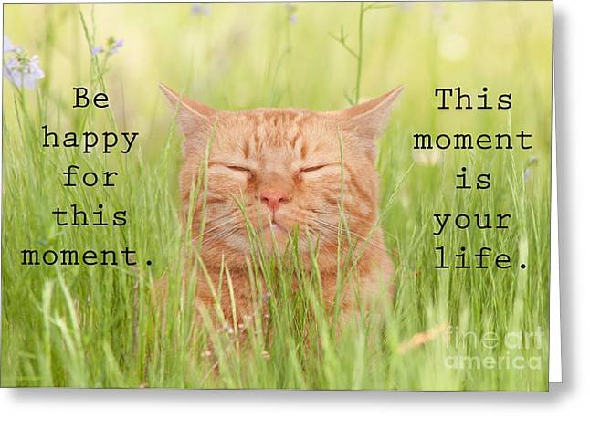 Be Happy For This Moment Greeting Card by Sari ONeal