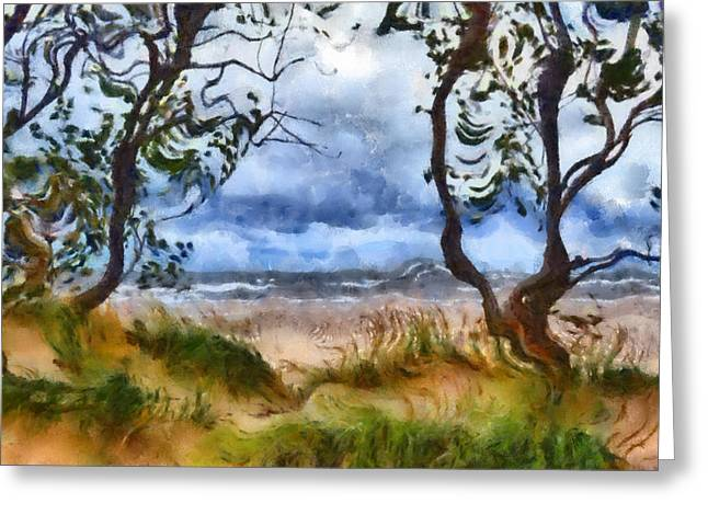Beach And Trees Greeting Card by Michelle Calkins