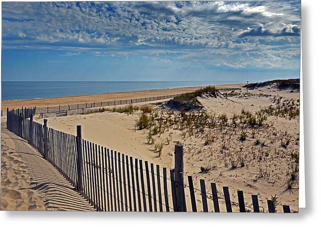 Beach At Cape Henlopen Greeting Card