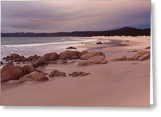 Beach At Dawn, Friendly Beaches Greeting Card by Panoramic Images