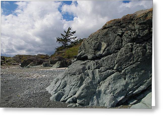 Beach At Fort Rodd Hill Greeting Card