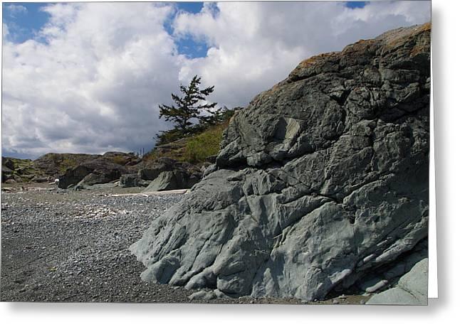 Beach At Fort Rodd Hill Greeting Card