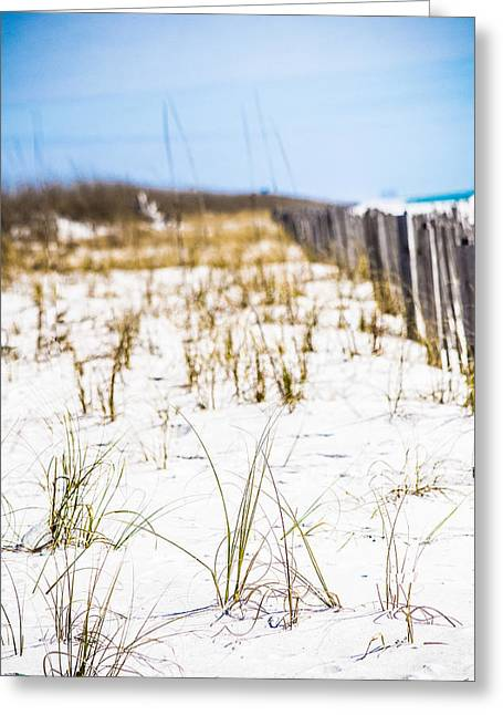 Beach Breeze  Greeting Card by Shelby  Young
