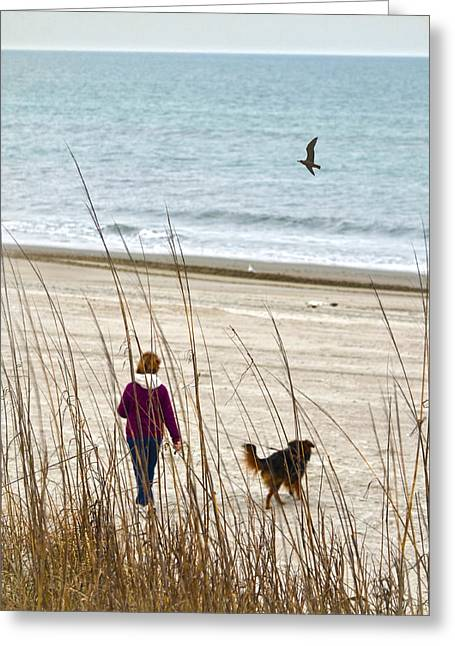 Beach Companions Greeting Card by Sandi OReilly