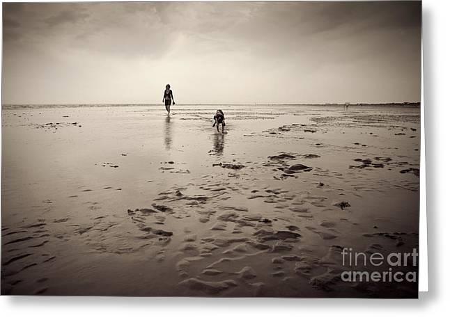 Beach Dog Greeting Card by Lee Martin