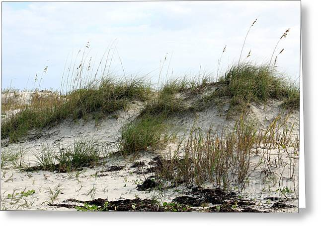 Greeting Card featuring the photograph Beach Dune by Chris Thomas