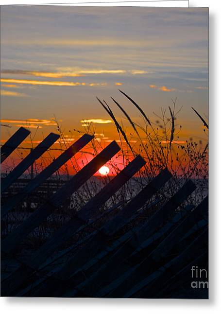 Beach Fence Greeting Card by Amazing Jules