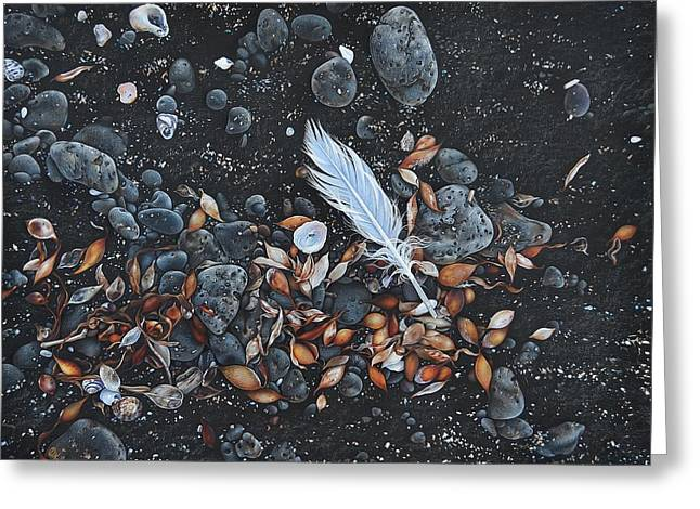 Beach Floor. Flinders Vic Greeting Card