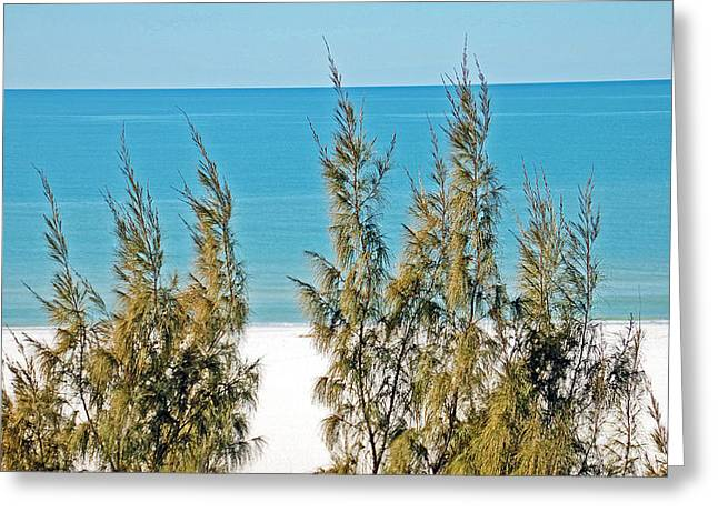 Beach Front View Greeting Card by Aimee L Maher Photography and Art Visit ALMGallerydotcom