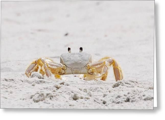 Beach Guard Greeting Card