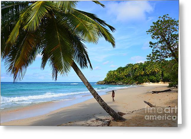 Greeting Card featuring the photograph Beach In Dominican Republic by Jola Martysz