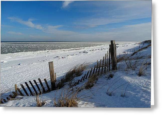 Beach On A Winter Morning Greeting Card by Dianne Cowen