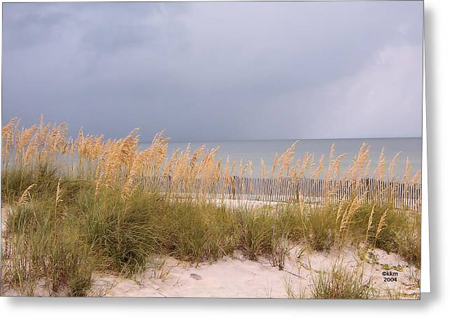 Beach On West Ship Island Greeting Card