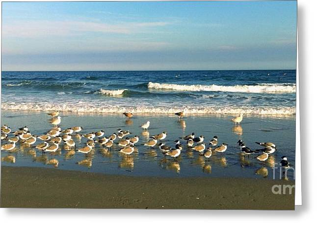 Beach Party Greeting Card by Shelia Kempf