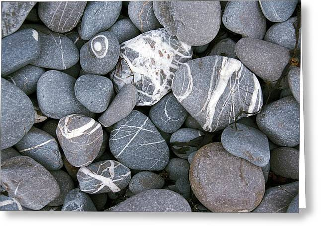 Beach Pebbles With Quatz Veins. Greeting Card