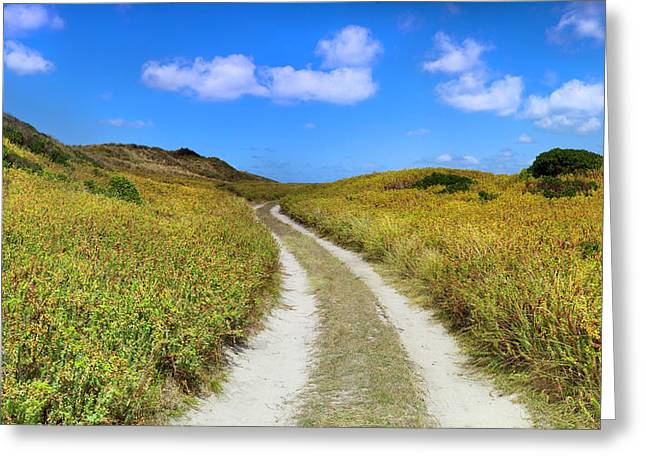 Beach Road Greeting Card by Sean Davey