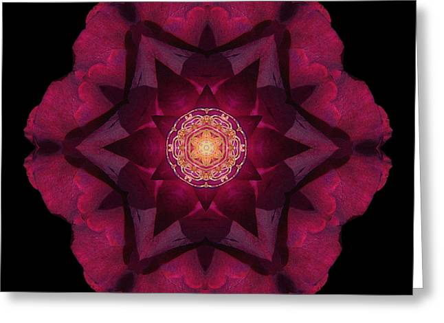 Greeting Card featuring the photograph Beach Rose I Flower Mandala by David J Bookbinder